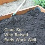 Raised Garden Bed Soil -- why raised beds work