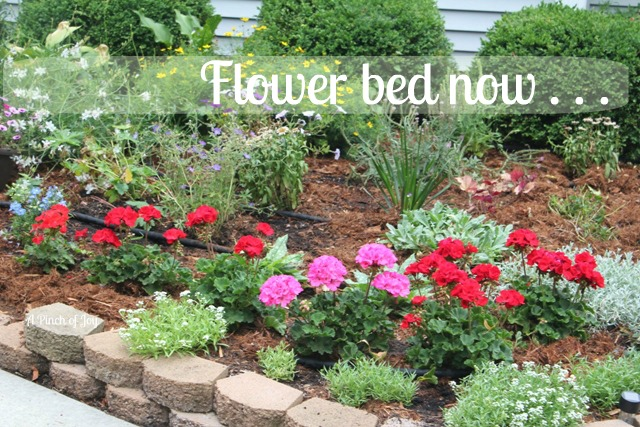 Flower bed before and after for Best plants for front flower bed