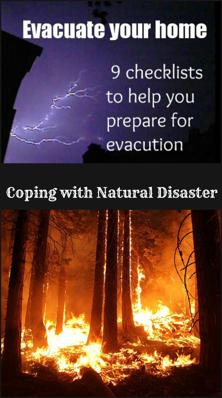 Evacuate Your Home - 9 checklists to help you prepare -- A Pinch of Joy #Coping #Natural Disaster#Organized