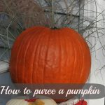 How to make pumpkin puree from a fresh pumpkin
