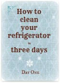 Clean Your Refrigerator in Three Days – Day One