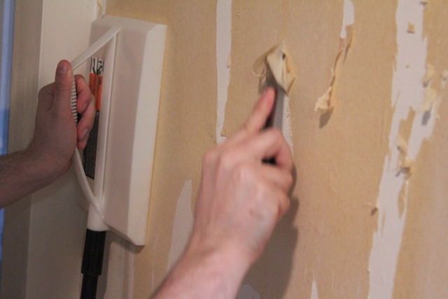 Wallpaper Steamer in action