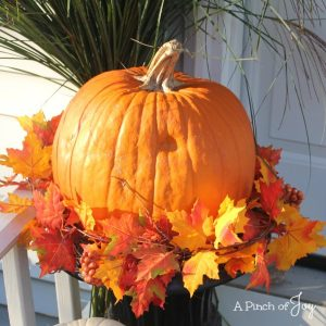 Welcome Autumn -- Front Porch decor -- A Pinch of Joy