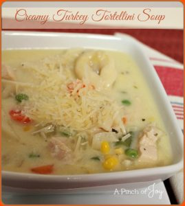 Creamy Turkey Tortellini Soup -- A Pinch of Joy