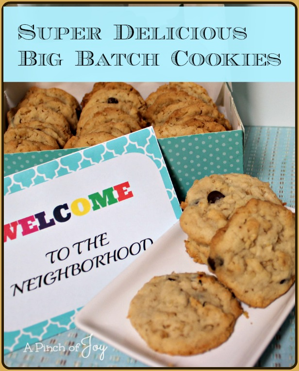 Super Delicious Big Batch Cookies - A Pinch of Joy
