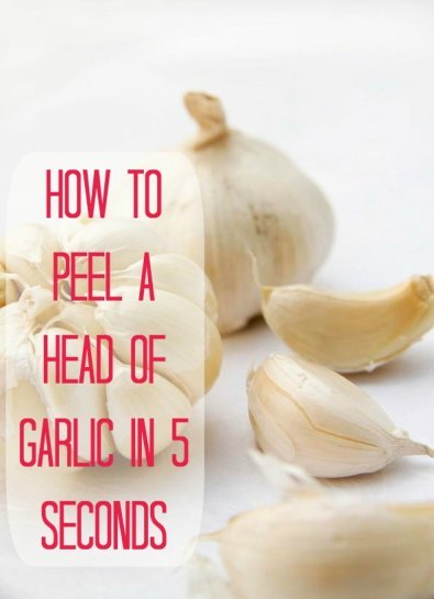 395x545xgarlic.jpg.pagespeed.ic.xWLMcYyRlz