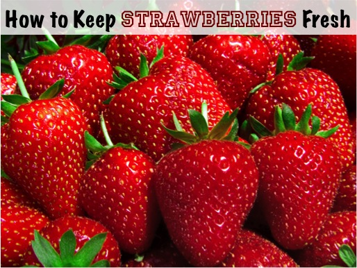 How-to-Keep-Strawberries-Fresh-Longer