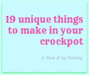 19 Unique things to make in your crockpot -- A Pinch of Joy