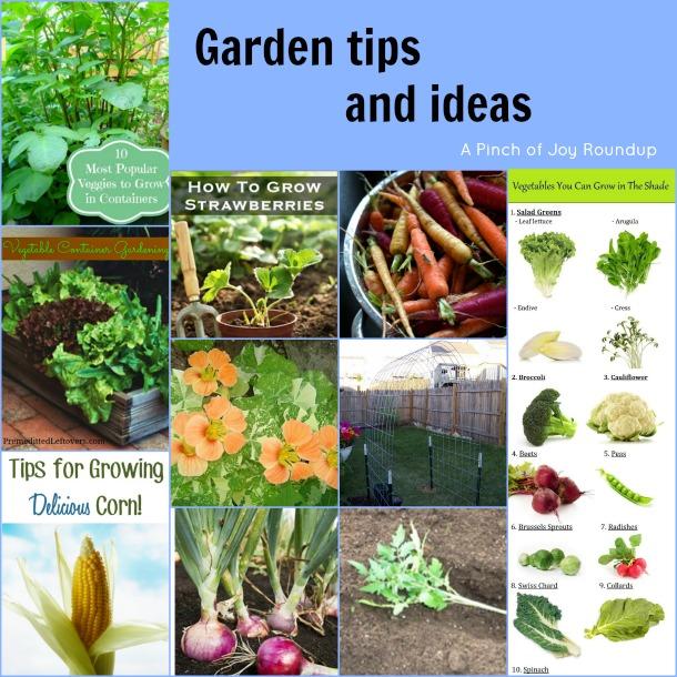Garden tips and ideas -- A Pinch of Joy Roundup