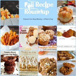 10 Fabulous Fall Recipes -- A Pinch of Joy