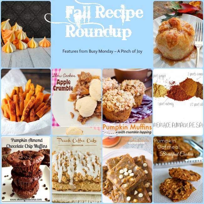 10 Fabulous Fall Recipes -- A Pinch of Joy