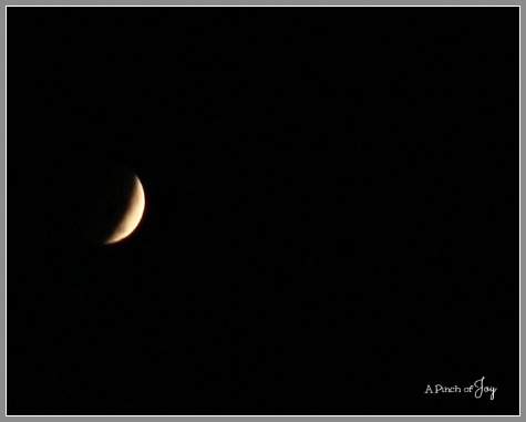 Eclipse October 8 2014 -- A Pinch of Joy
