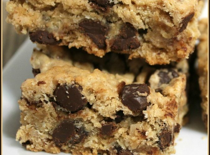 Peanut Butter Oatmeal Coconut Chocolate Chip Bars