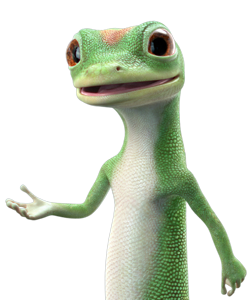 gecko_large