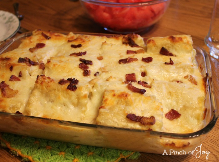 Chicken and Bacon Lasagna Rollups -o- A Pinch of Joy