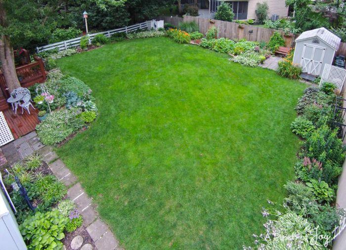 Backyard -- Drone shot