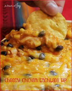 Cheesy Chicken Enchilada Dip -- A Pinch of Joy Bursting with flavor, cheesy and delicious