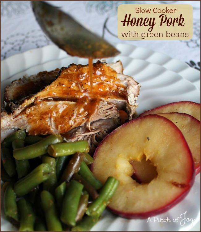 Slow Cooker Honey Pork with green beans -- A Pinch of Joy