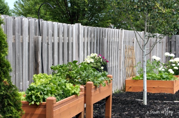 Raised Bed Planters -- A Pinch of Joy