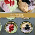 Fro Yo Duos - Frozen Greek Yogurt Treat -- A Pinch of Joy