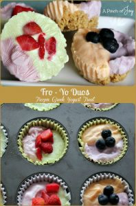 Fro Yo Duos - Frozen Greek Yogurt Treat -- A Pinch of Joy