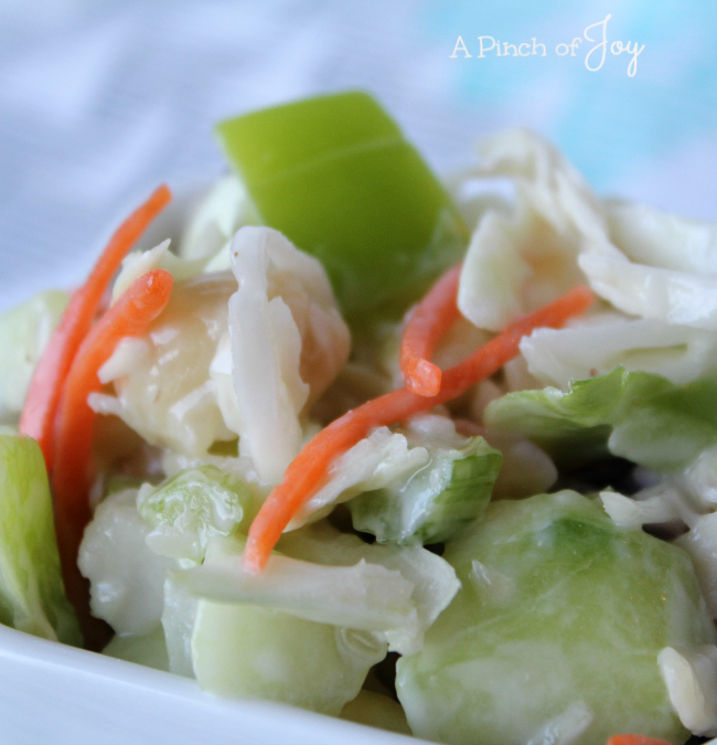 Loaded Coleslaw -- aka Pasta Veggie Coleslaw -- A Pinch of Joy