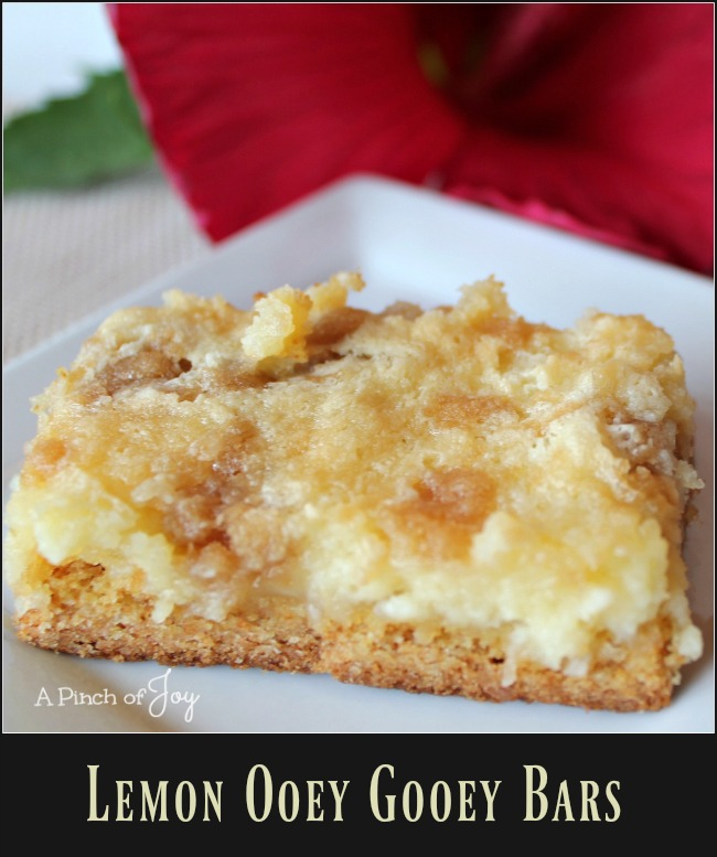 lemon-ooey-gooey-bars-a-pinch-of-joy The tang of lemon, the rich creaminess of the filling atop a thick crust, finished with butter crumbles.