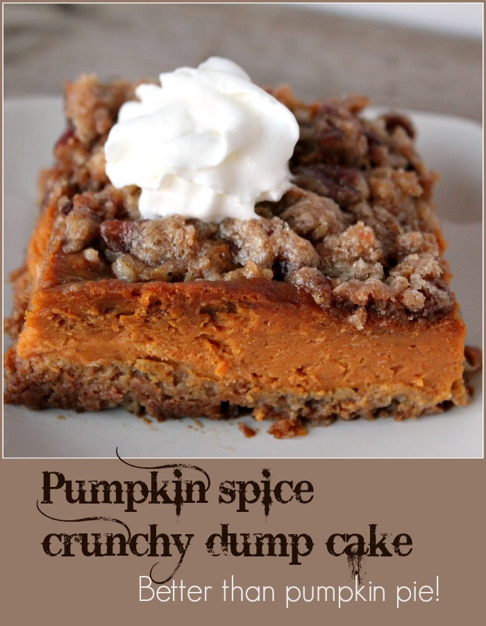 pumpkin-spice-crunchy-dump-cake-a-pinch-of-joy-full-of-spicy-pumpkin-goodness-this-it-better-than-pumpkin-pie