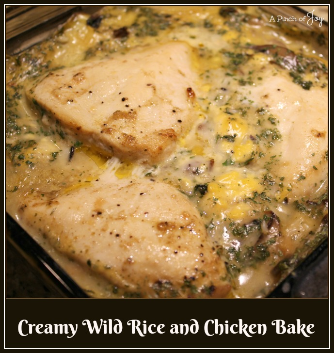 Creamy Wild Rice and Chicken Bake -- A Pinch of Joy