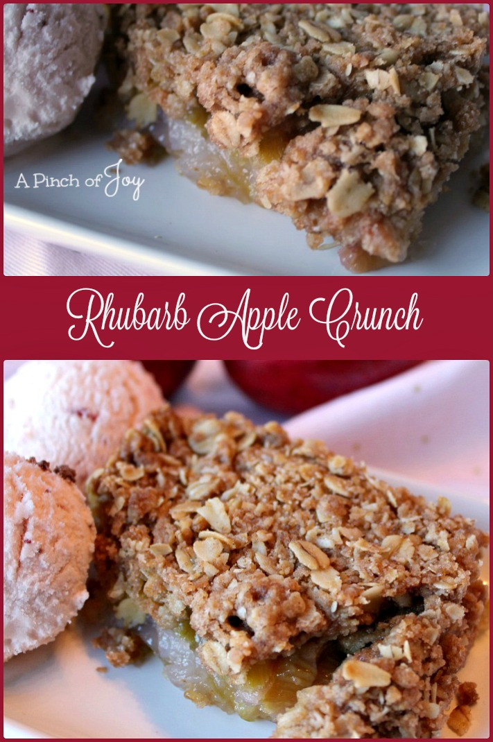 Rhubarb Apple Crunch -- A Pinch of Joy Deliciously full of contrast - tart textured rhubarb, sweet apple chunks, crunchy topping!