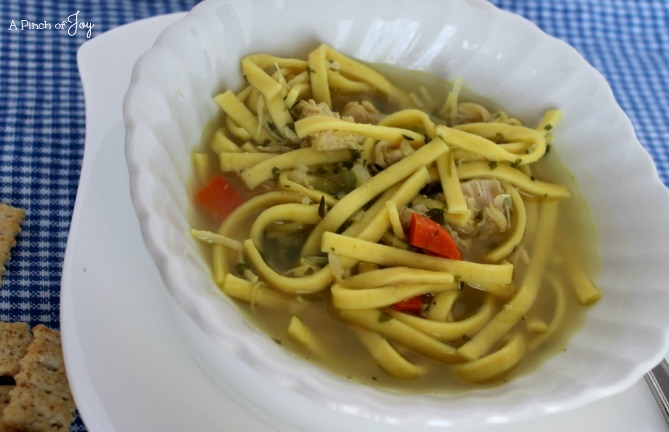 Savory kChicken Noodle Soup - A Pinch of Joy