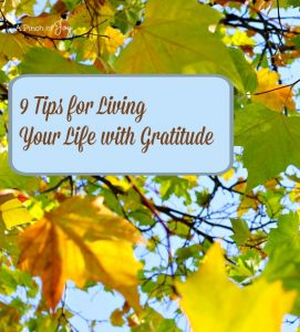 9 Tips for Living Your Life With Gratitude -- A Pinch of Joy