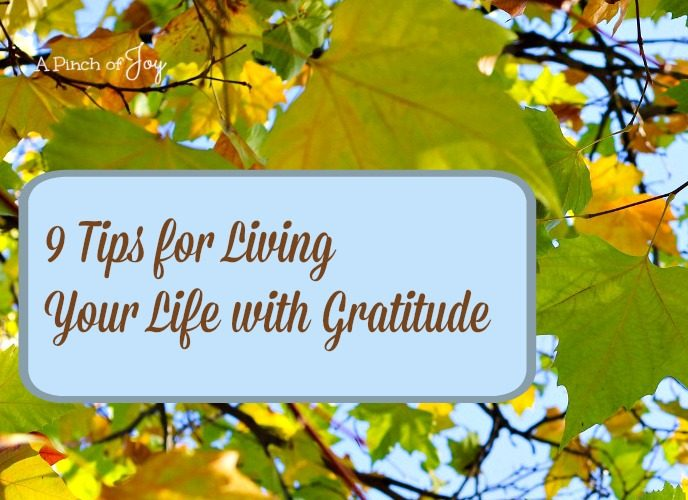 Nine Tips for Living Your Life with Gratitude