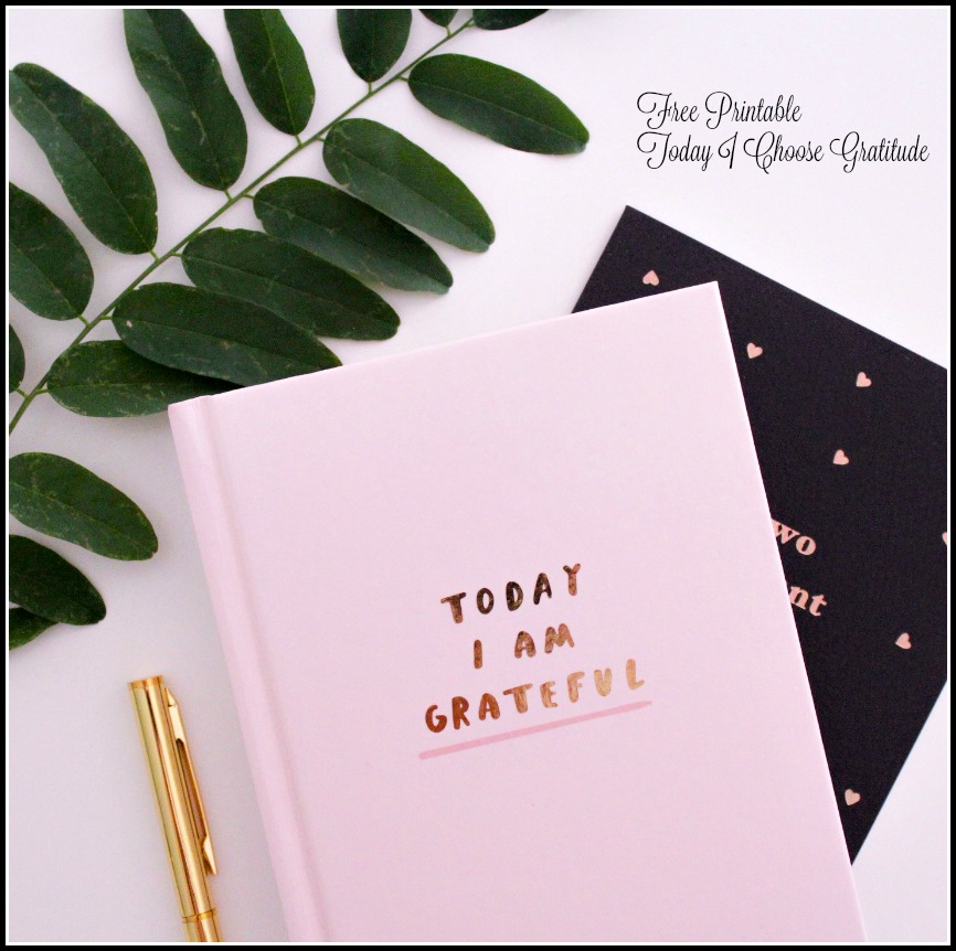 Today I Choose Gratitude -- Free Printable  A Pinch of Joy  #Thanksgiving #Grateful