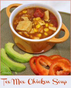 Tex Mex Chicken Soup -- What's for Lunch -- A Pinch of Joy