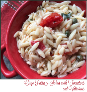 Orzo Pasta Salad with Tomatoes and Variations -- A Pinch of Joy